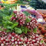 Fruits et légumes de saison en octobre