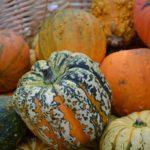 Fruits et légumes de saison en décembre