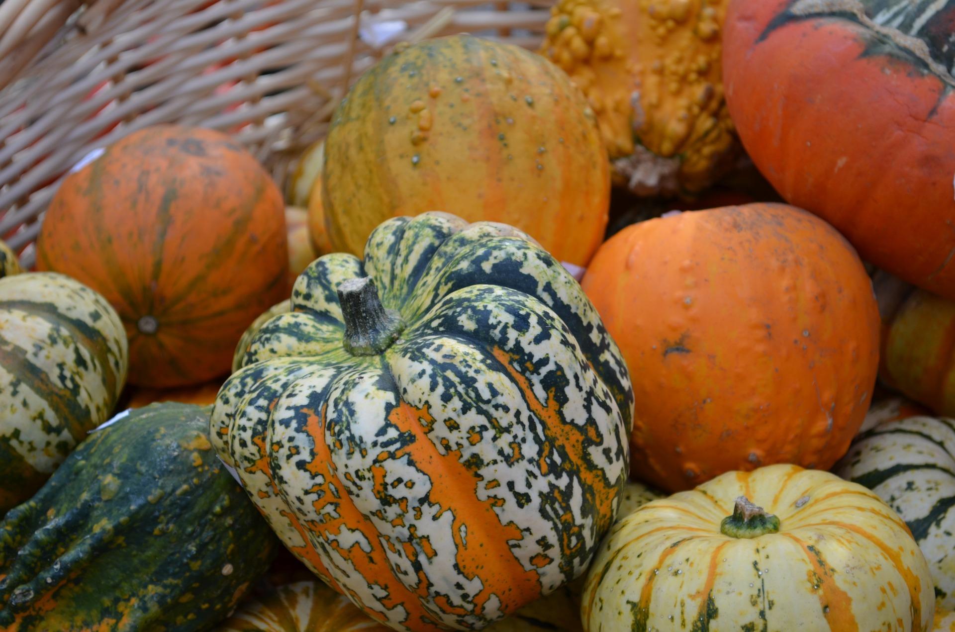 Fruits et l gumes de saison en d cembre ecolozen - Fruit de saison decembre ...