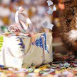 Cadeaux écolo : bons réflexes et idées cadeaux