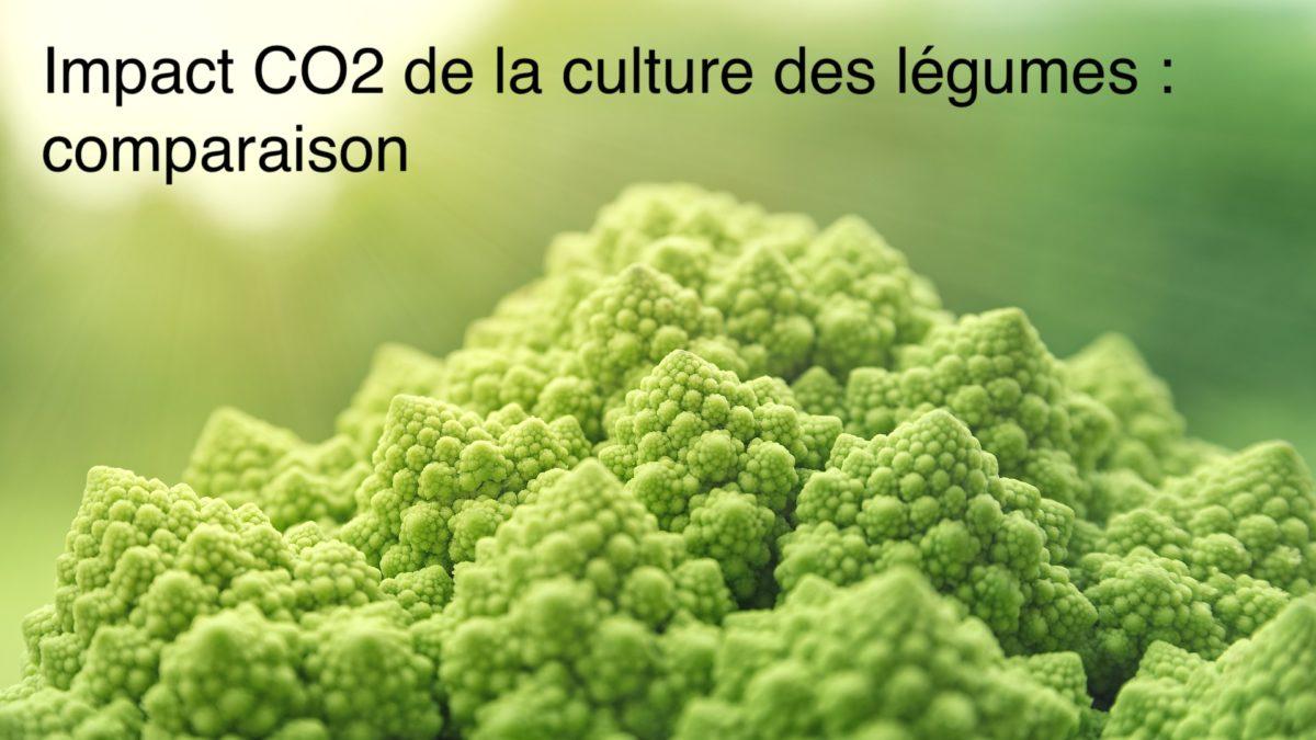 Empreinte carbone des légumes : comparaison